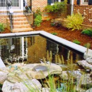 Pond and Waterfall After